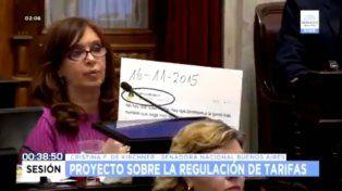 Cristina, el tuit de Michetti contra el aumento de tarifas y el yaguareté mimoso