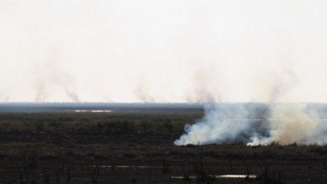 Postal repetida. La quema de pastizales en la zona de islas entrerrianas viene generando contrapuntos entre funcionarios.