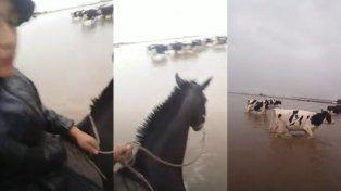 Viralizan un video de un gaucho en medio del temporal