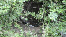 Agustina fue encontrada sin vida en un descampado, muy cerca de donde había desaparecido y dónde era buscada.