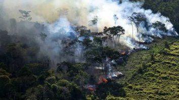 la nasa difunde impactantes imagenes de incendios en el amazonas