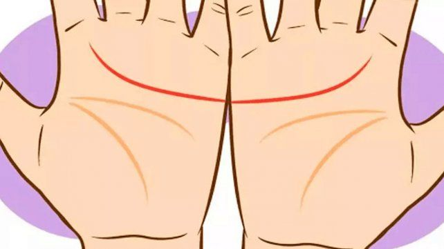 ¿Estas líneas de tu mano se unen?: lo que dicen de vos