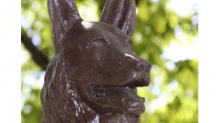 El Día Nacional del Perro en homenaje a Chonino
