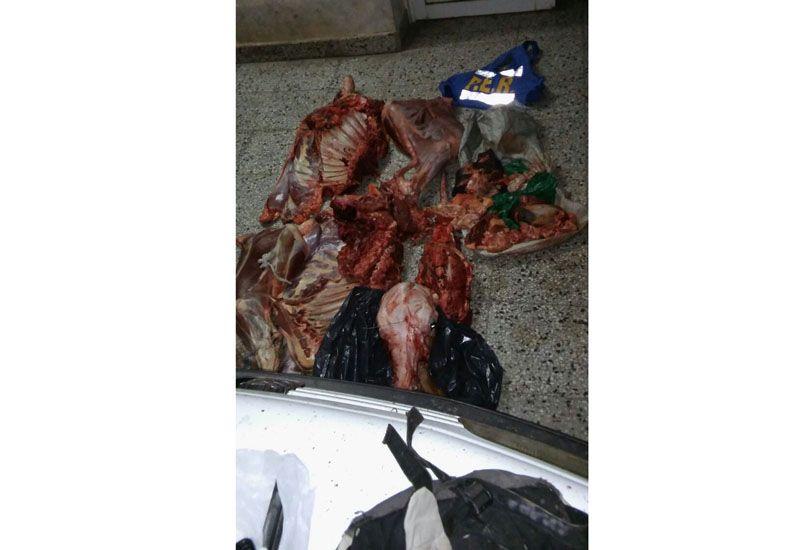 Detenidos por carnear un animal