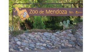 El Zoo de Mendoza cerró por 10 días luego de la muerte de 36 animales en dos semanas