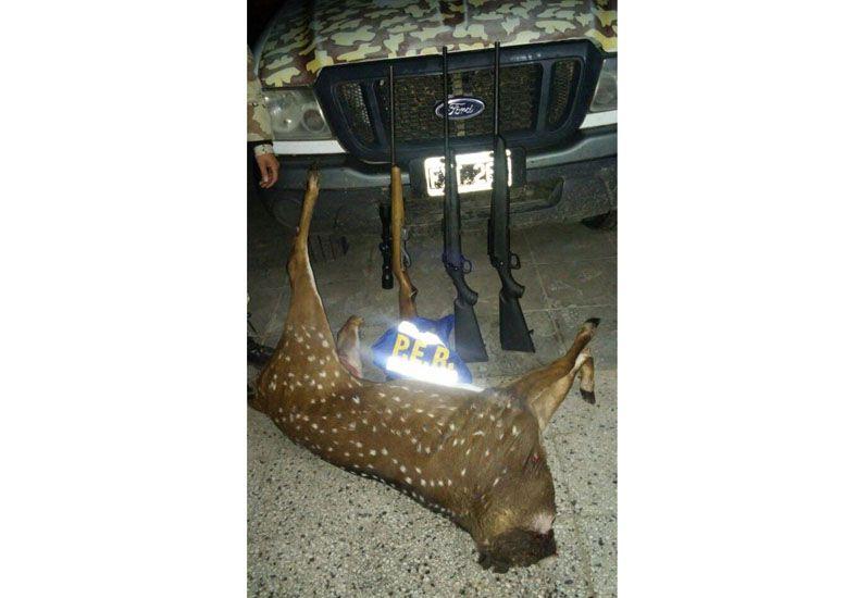 Secuestraron armas y animales por infracción a la Ley de Caza