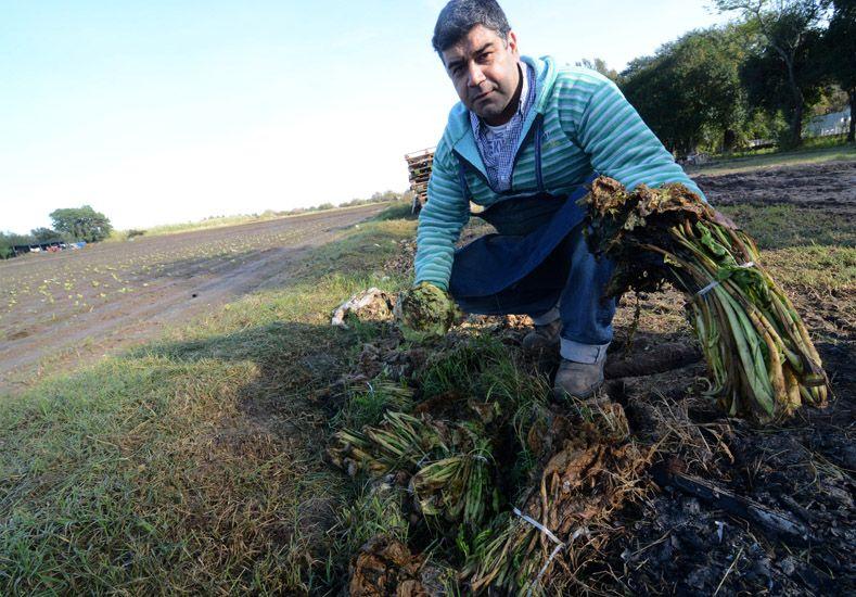 Los productores agropecuarios reclaman respuestas rápidas. Foto Télam.