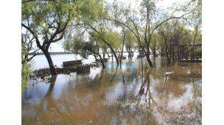Las inclemencias climáticas azotaron a los campos del litoral argentino.   Foto UNO/Juan Ignacio Pereira