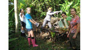 Comunidad. El trabajo comunitario en la naturaleza