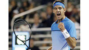 Del Potro vuelve al Roland Garros