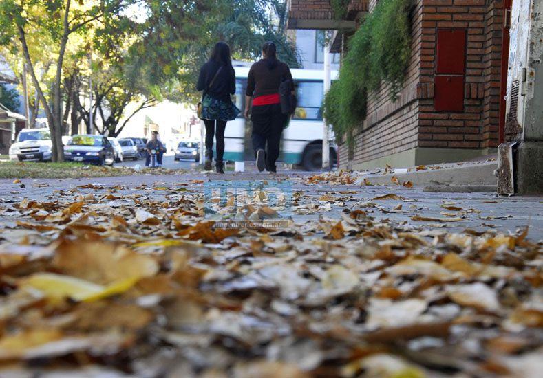Vivir el otoño en Paraná tiene sus cosas buenas y sus cosas malas