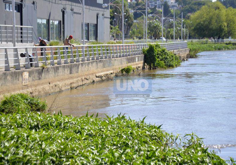 Puerto local. En Paraná el río está por encima de la evacuación.   Foto UNO/Mateo Oviedo