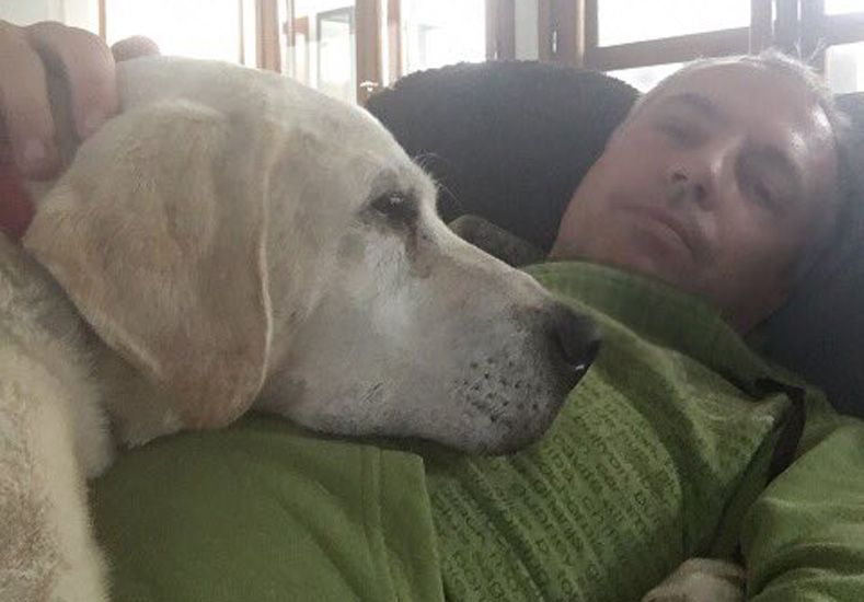 Marley abatido por la muerte de su perro Wylie