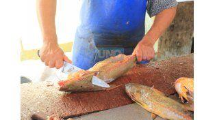 Difícil. Hay poca variedad de pescado y a precios elevados. (Foto UNO/Diego Arias)