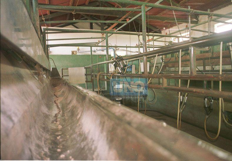 Salvataje. La suba de la electricidad sumó penurias al sector.  Foto UNO/Archivo ilustrativa