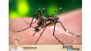 Derriban mitos sobre el combate a los mosquitos