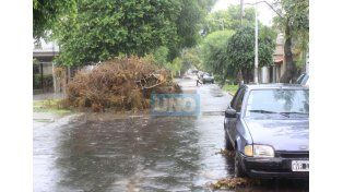 Calle Gobernador Sola. La foto fue tomada el viernes 26