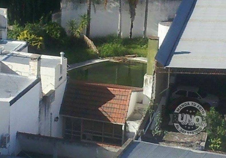 Limpiaron el natatorio señalado como posible foco del vector del dengue