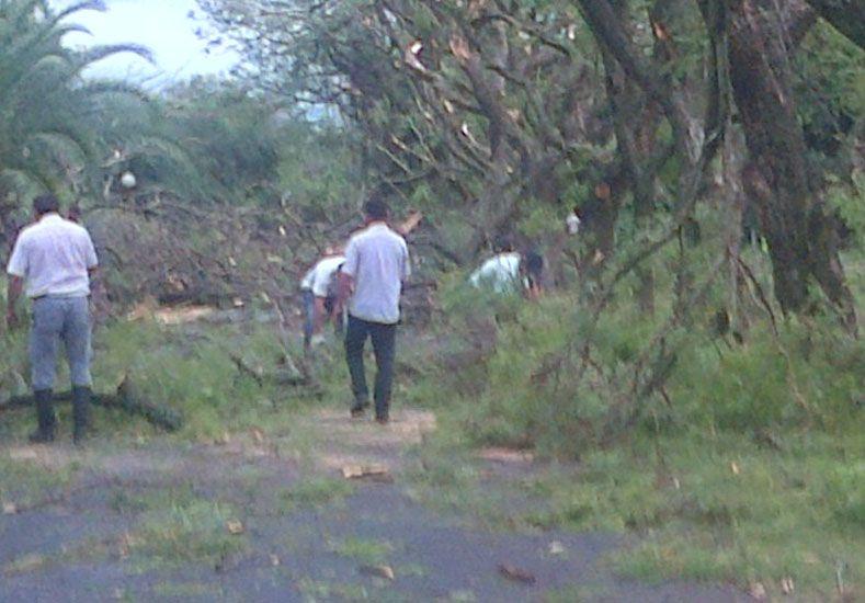 Destrozos en Las Delicias. Foto: Campo en Acción