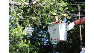Algunas zonas de la ciudad continúan sin energía eléctrica tras el temporal
