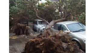 El temporal también provocó severos daños en Santa Fe