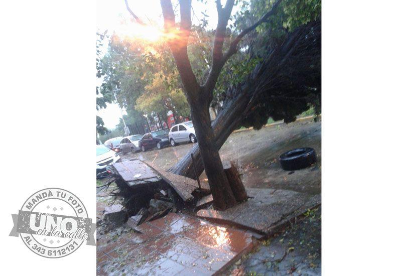 Terrible temporal de lluvia y viento generó graves destrozos en Paraná