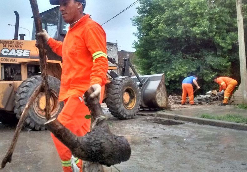 Foto: Personal municipal acudió a calle Laurencena