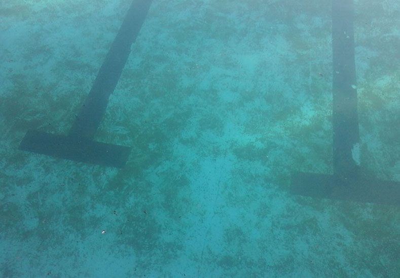 Sedimentos. Ayer el fondo de una de las piscinas tenía moho.