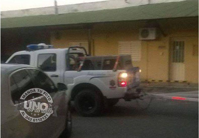 """Proteccionistas denuncian que la Policía levantó a los """"perros comunitarios"""""""