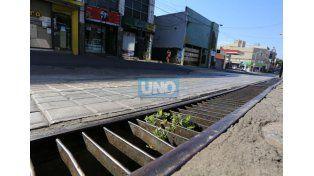 La Verdolaga creció en calle Buenos Aires