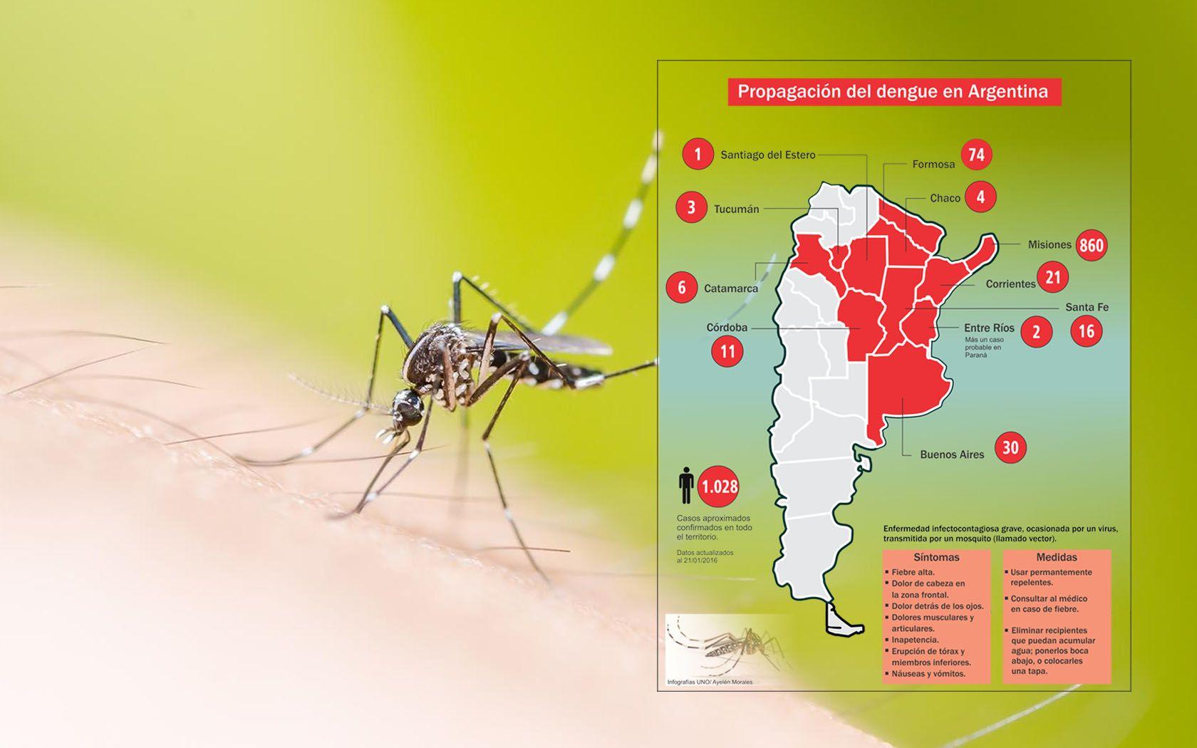 El dengue se propaga en el país y extreman medidas en Entre Ríos