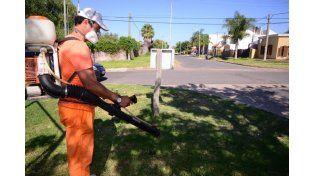 Detectaron un posible caso de dengue en la ciudad de Paraná