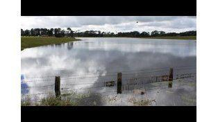 La Federación Agraria solicitó que se dicte la emergencia agropecuaria