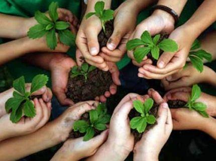 Se promulgó la ley de Educación Ambiental en Entre Ríos