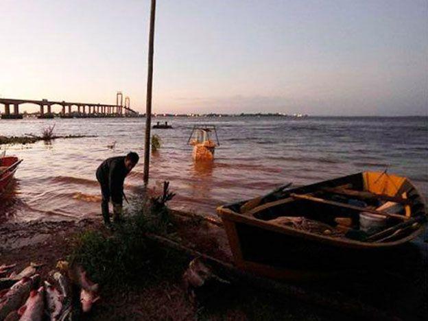El Río Paraná avanza sobre las costas de Chaco y Corrientes provocando estragos