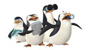 Pingüinos intentaron escapar de un zoológico como en la película Madagascar
