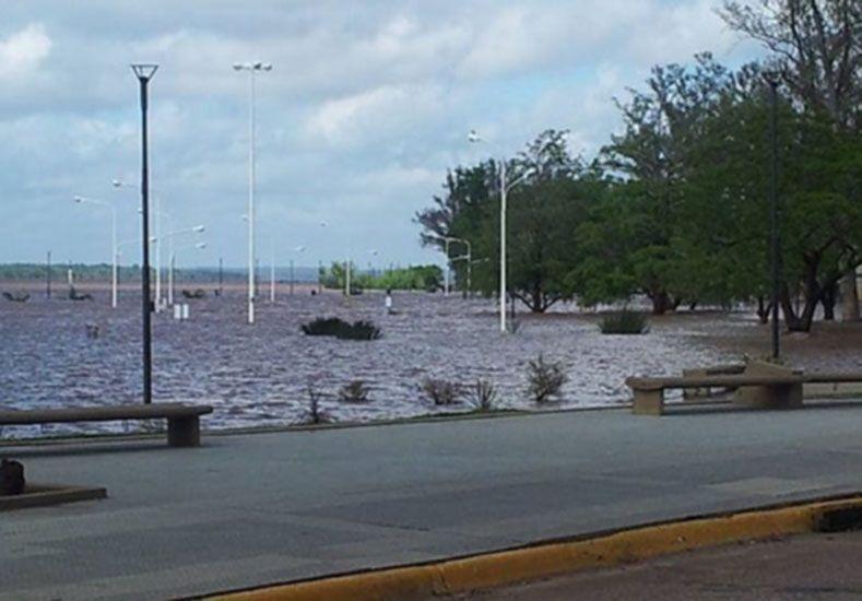 Así está el río Uruguay en la costanera de Concordia. (Foto: Diario Río Uruguay)