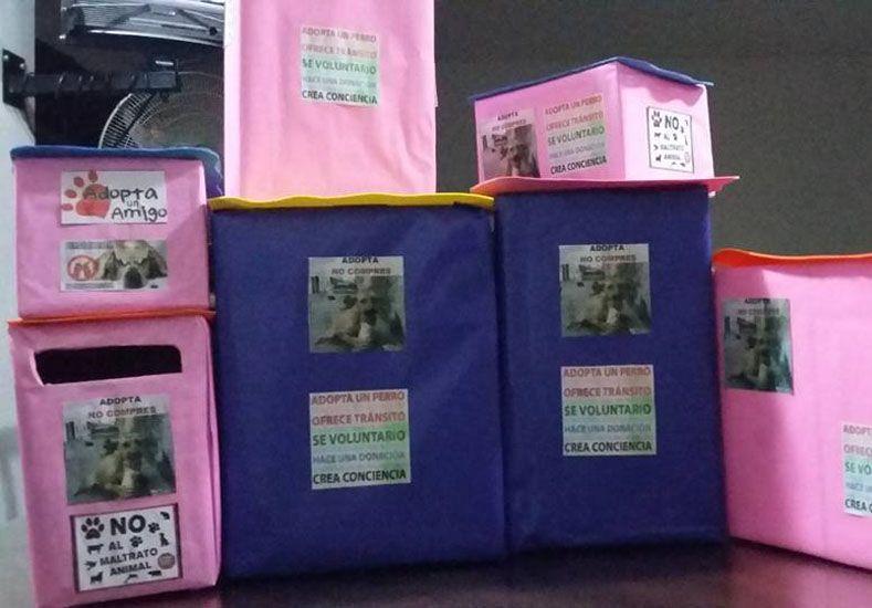 Buena medida. En las diferentes canchas se pueden observar cajas para los que quieran colaborar con los perros callejeros.