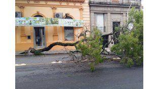 Foto: Facebook Paraná hacia el mundo
