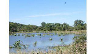 Agua dulce. El corredor fluvial es un complejo de ríos y lagunas. (Foto gentileza Turismo Diamante)