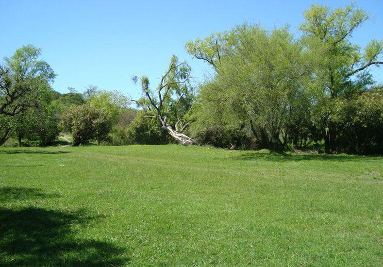 El verde y la sombra distinguen el predio de 9 hectáreas.