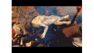 Hallaron una extraña criatura en el río Paraná