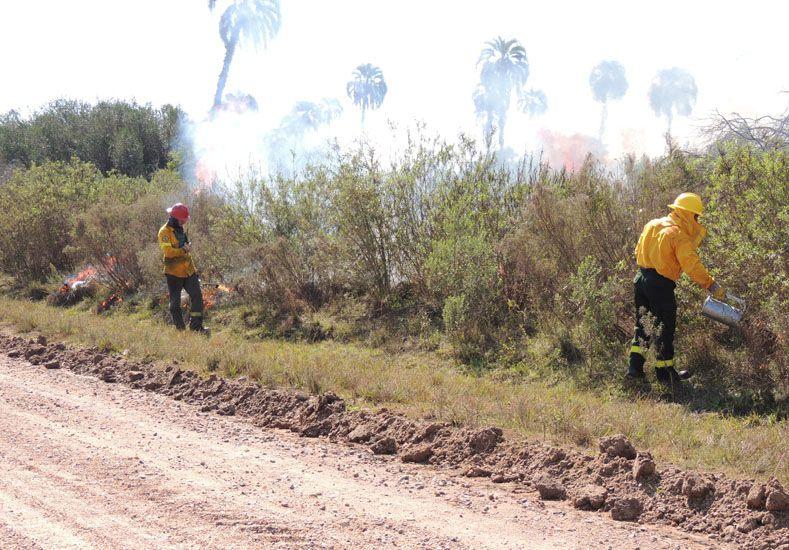 Comenzaron las quemas prescriptas en El Palmar