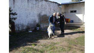 El juicio a Facundo Bressan por el crimen de Priscila, en la recta final