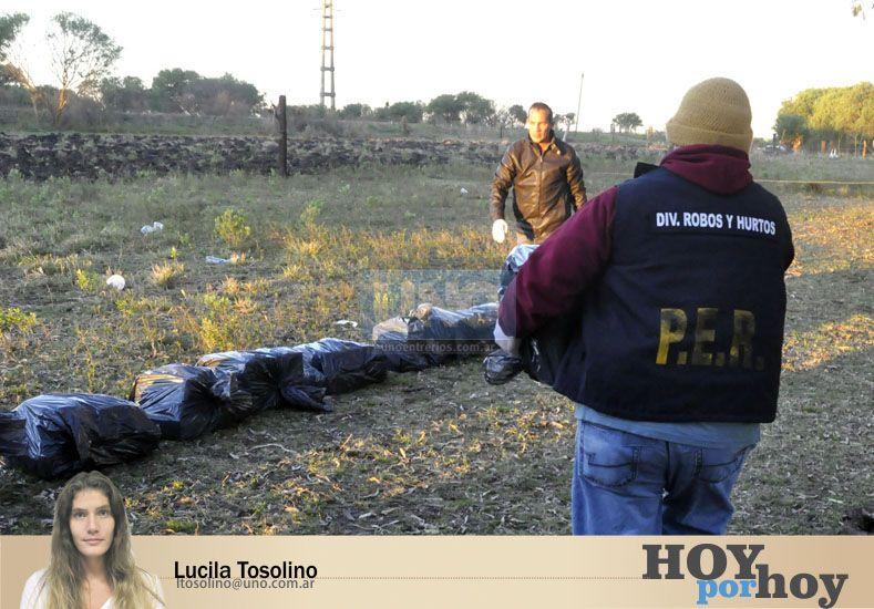 Desocultamiento y narcotráfico