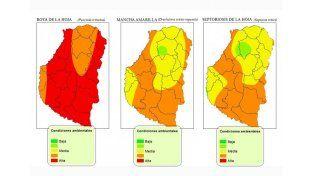 Las condiciones ambientales de cada región definirán la severidad de las enfermedades. Foto: Bolsa Cereales