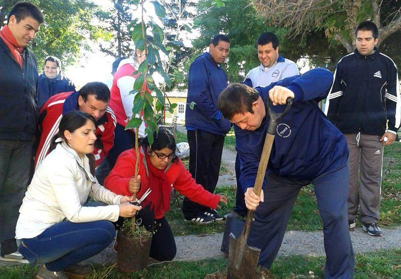 Fotos: Prensa Municipal