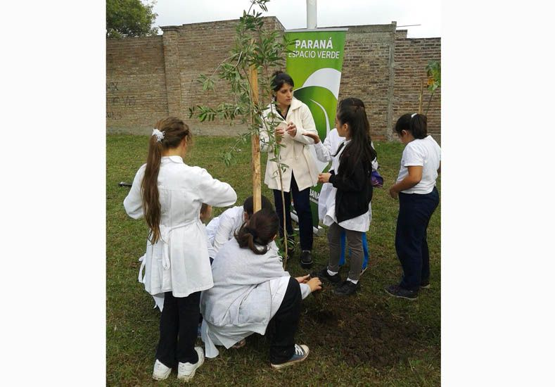 En Paraná se plantaron más de mil especies de árboles en lo que va del año