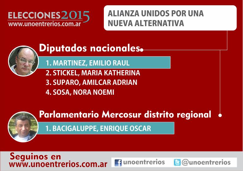 Los candidatos a diputados nacionales y parlamentarios del Mercosur