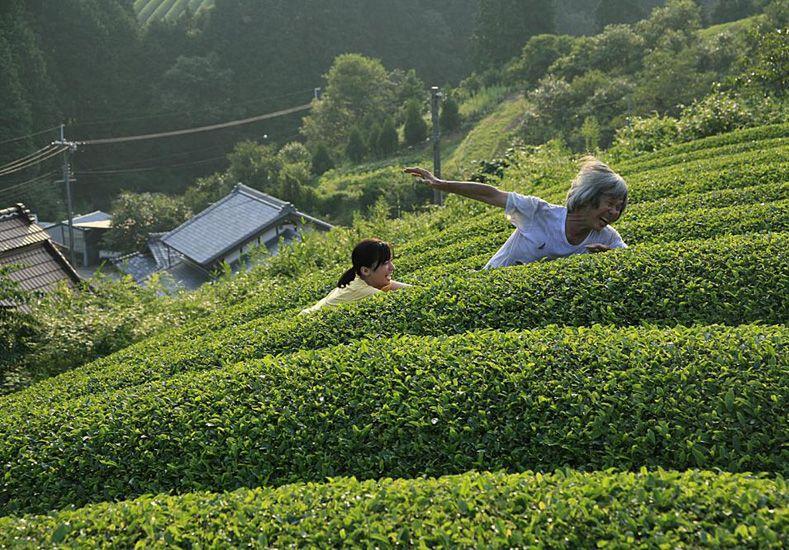 Drama. El filme de la japonesa Naomi Kawase muestra la relación de un anciano y su cuidadora.